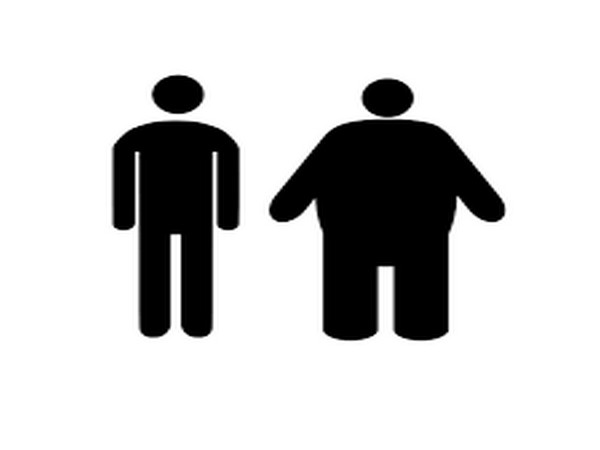 New cellular player involved in obesity discover