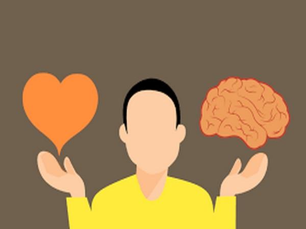 Brain balances pleasure and pain