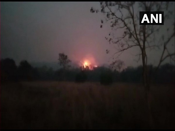 A visual of the forest fire. (ANI)
