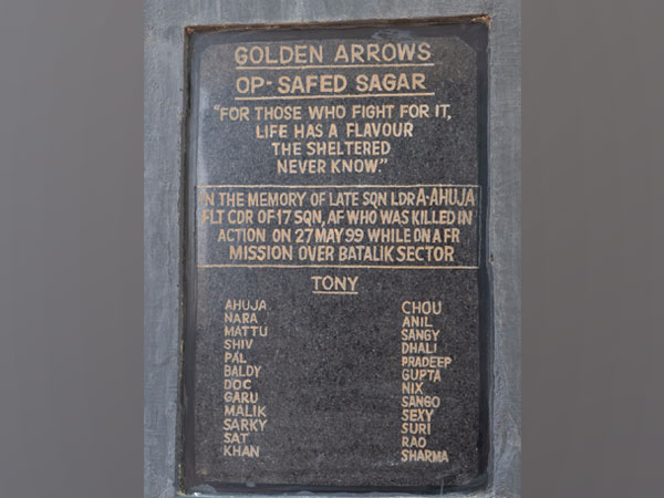Plaque of the 'Golden Arrows' 17 Squadron of the IAF