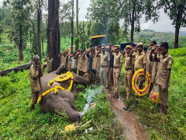 After the elephant's death in Coimbatore, forest officials and guards paid floral homage to her. (Photo: ANI)