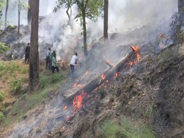 Visuals of fire in forest in Rajouri, Jammu and Kashmir.
