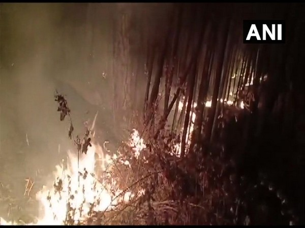 A fire in Tehri forest. Photo/ANI