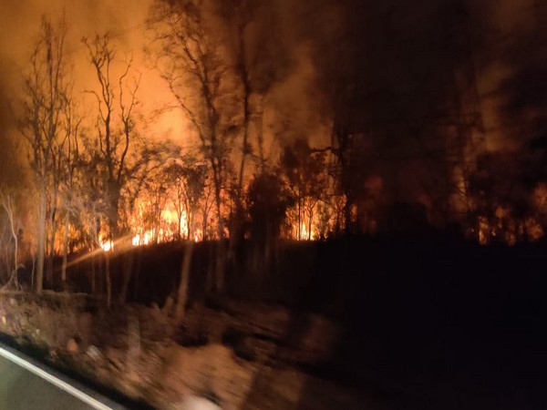 A major fire broke out in the Domalapenta forest range in the Nagarkurnool district on Monday