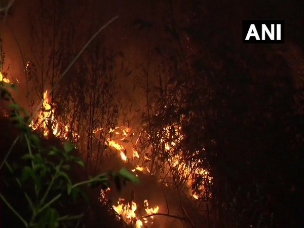 Visuals from fire site in Sangoor village.