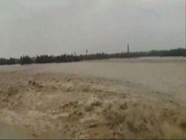 Flood has inundated several villages in Bihar's Darbhanga district. Photo/ANI
