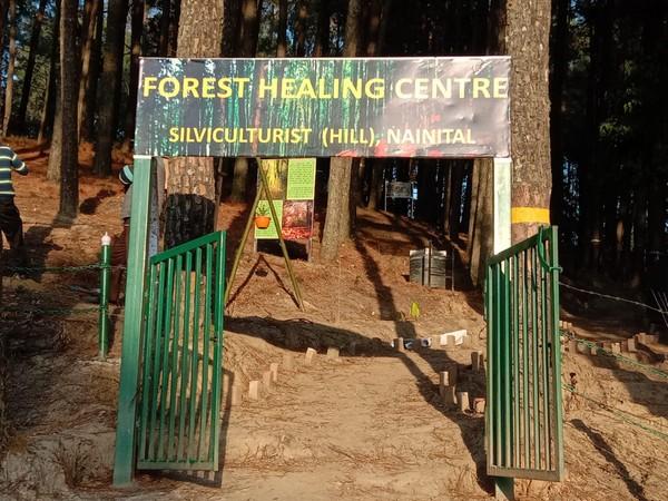 First forest healing centre in Ranikhet