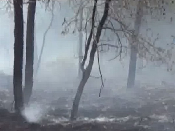 Fire erupted in Tehri forest on Sunday due to garbage