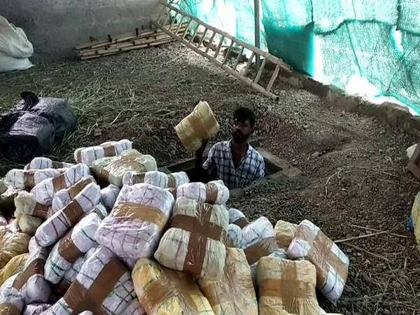 The accused had stored Ganja underground at a farm in Kalagi taluk of Kalburagi district. (Photo/ANI)