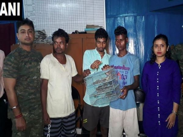 Belacoba Forest Range arrested three people and seized 15 Tockay gecko in Alipurduar in West Bengal. Photo/ANI