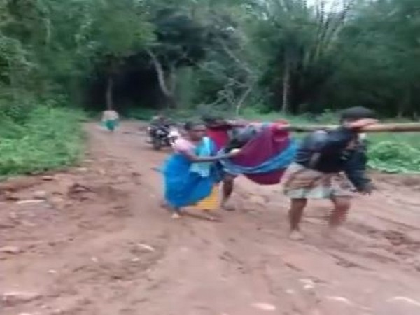 The pregnant woman being carried in a cloth cradle by her husband and another villager in Burgur village, Erode, in Tamil Nadu on Tuesday. Photo/ANI