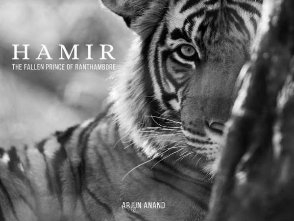 Hamir - The Fallen Prince of Ranthambore