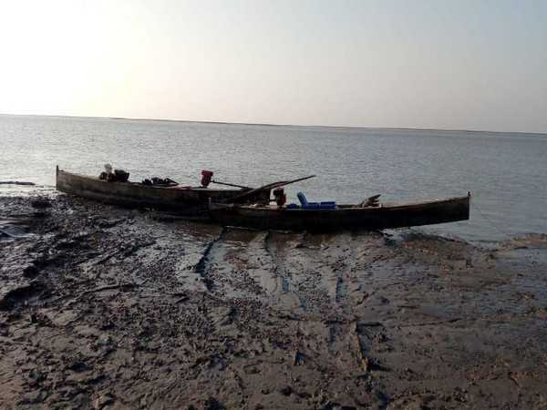 BSF seized five fishing boats from Pakistan in Harami Nullah area on Friday. Photo/ANI