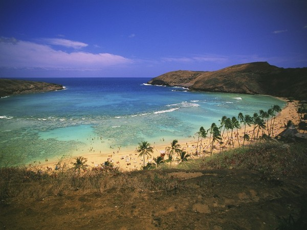 Hawaii, USA (representative image)