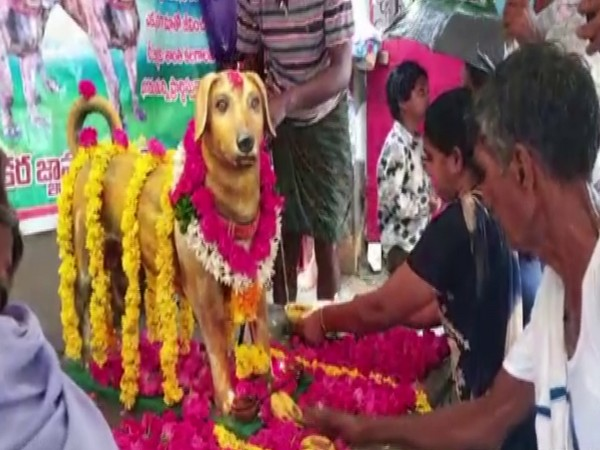 Visual of the bronze statue of the dog (Photo/ANI)
