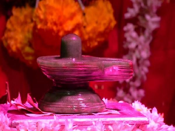 Pacche Linga put for darshan in Bandagadde Math on Vijayadashami. Photo/ANI