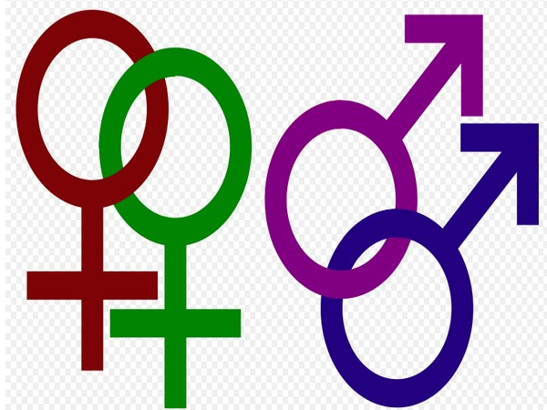 The new research analyses the attitudes towards homosexual men and women separately