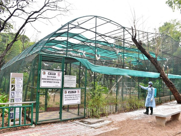 A visual from Nehru Zoological Park in Hyderabad.