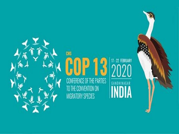The CMS COP 13 logo is inspired by 'Kolam', a traditional art form from southern India.