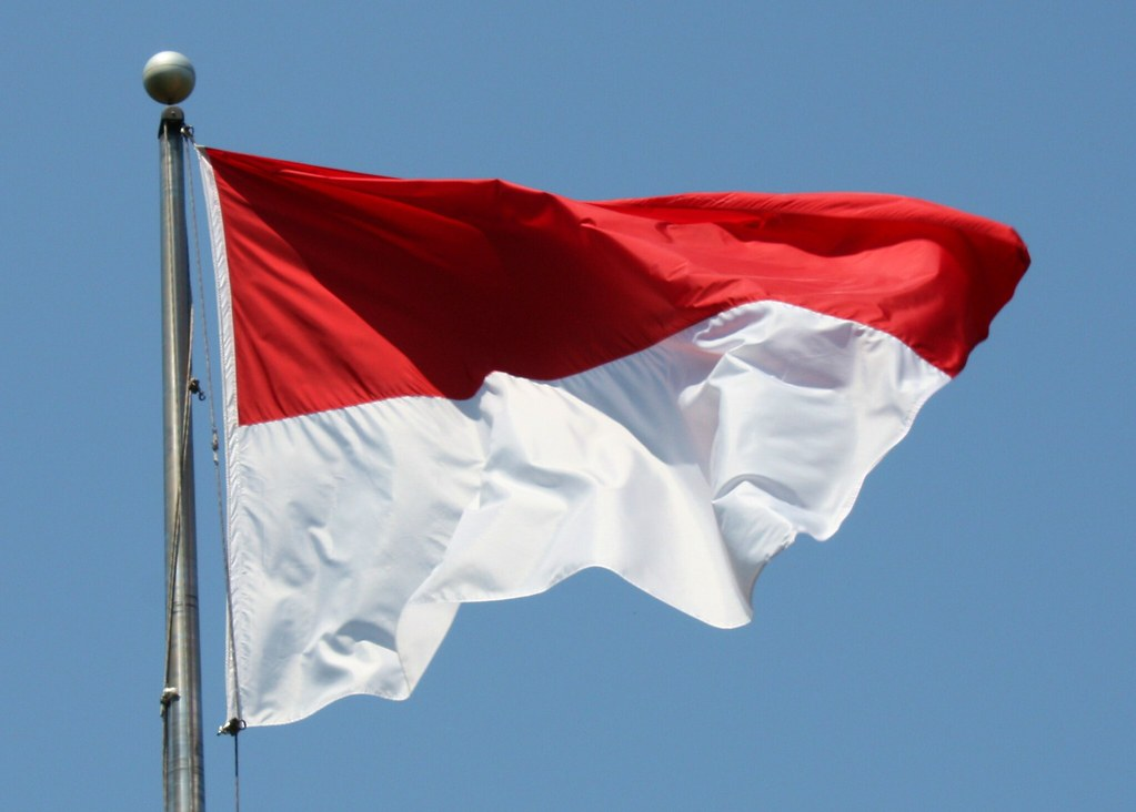 Flag of Indonesia (representative image)