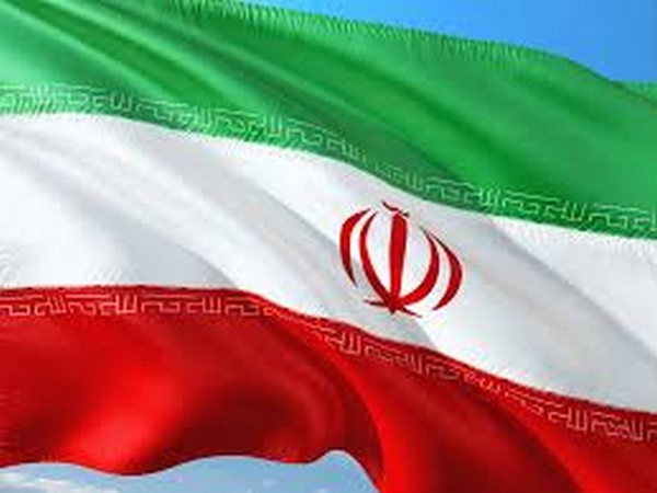 Flag of Iran (representative image)