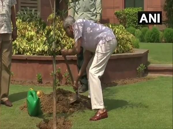 External Affairs Minister Subrahmanyam Jaishankar planting a sapling at Jawaharlal Nehru Bhawan in New Delhi (Photo/ANI)