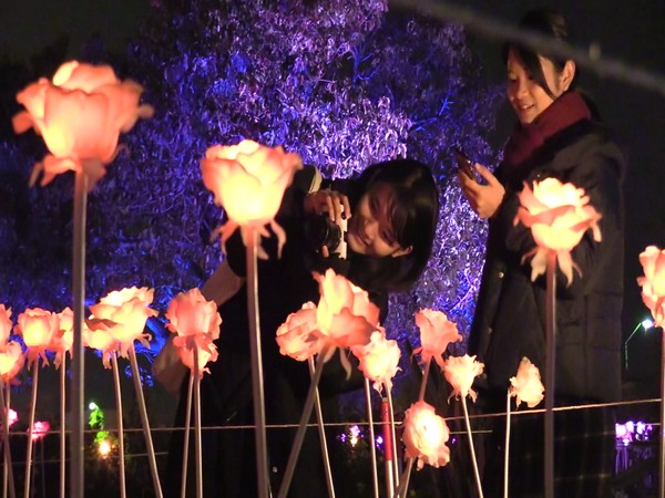 A visual from the night festival in Yokohama, Japan. Photo/ANI