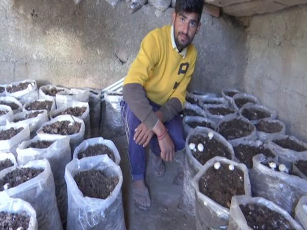 Kartik Sharma, mushroom farmer from Rajouri.