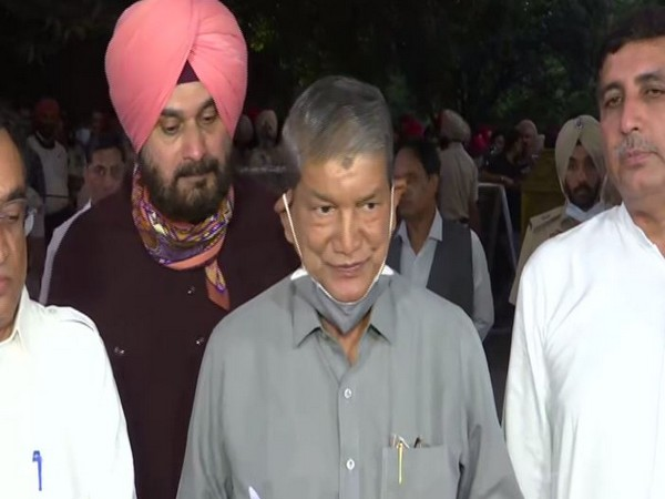 Congress Punjab In charge Harish Rawat (Photo/ANI)