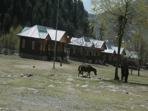New huts in the Kokernag (Photo/ANI)
