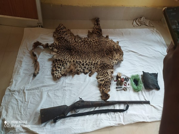 Leopard skin, arms, ammunition seized from poacher