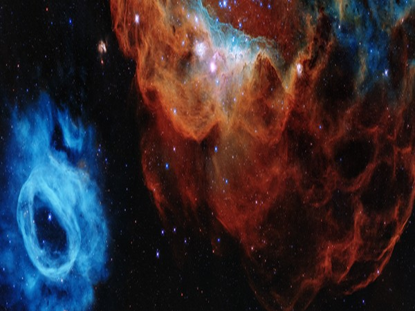 Colorful image resembling a cosmic version of an undersea world (Image courtesy: NASA)