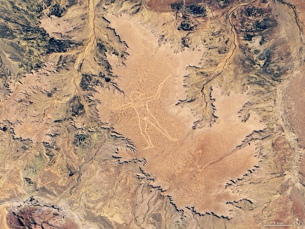 Latest satellite image of the Marree Man (Picture courtesy: NASA)