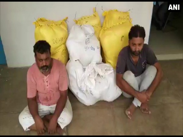 Drug peddlers along with 235 kgs of marijuana which was recovered from their possession by STF on Saturday in Meerut. Photo/ANI