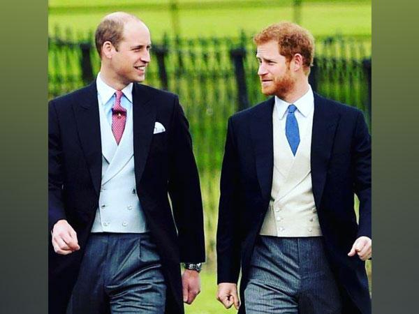 Prince William, Prince Harry (Image Source: Instagram)