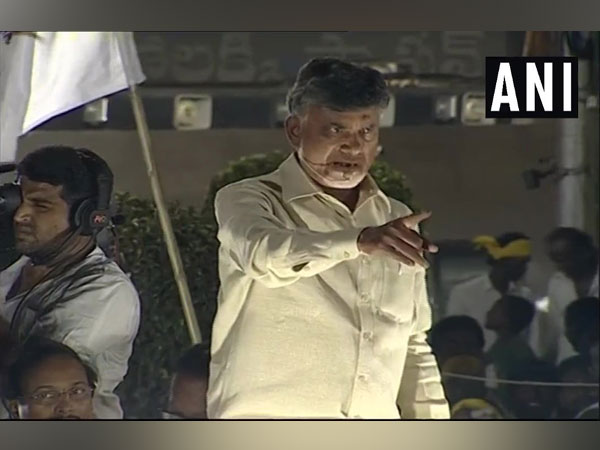 Andhra Pradesh Chief Minister and TDP chief N Chandrababu Naidu