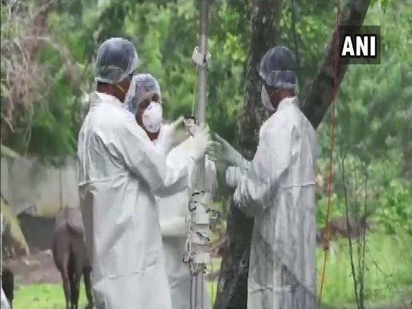 Scientists arrive in Ernakulam (Kerala) to find the source of Nipah virus outbreak