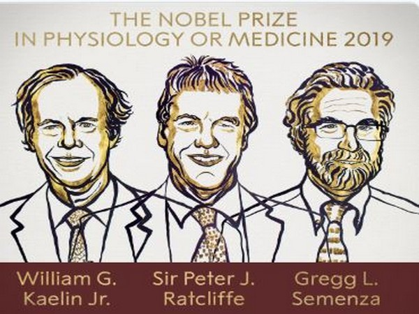 Nobel prize winners in Physiology or Medicine for the year 2019. (Photo courtesy: The Nobel Prize twitter handle)