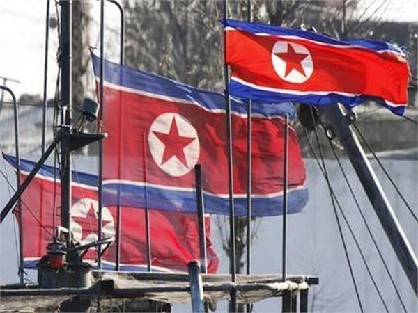 Flags of North Korea (representative Image)