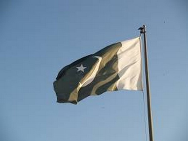 Flag of Pakistan. (representative Image)
