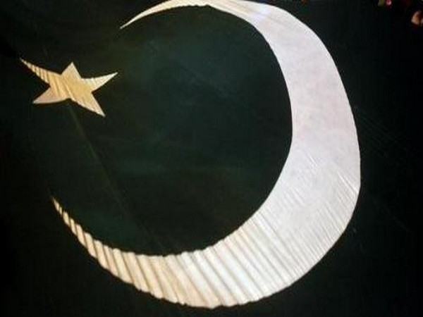 An image of the flag of Pakistan