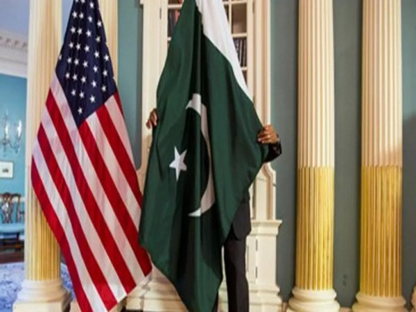 Flag of USA, Pakistan (representative image)