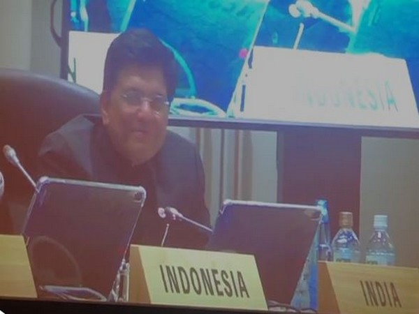 Union Minister for Commerce and Industry, Piyush Goyal, speaking at G20 ministerial meeting on Trade and Digital Economy in Japan on Sunday