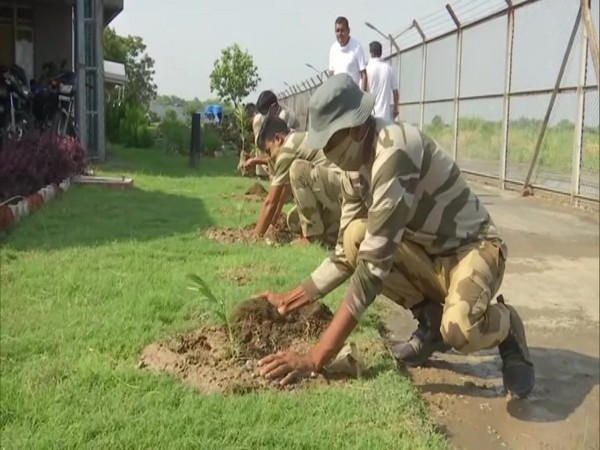 CISF personnel planting saplings at Amritsar airport on Sunday. [Photo/ANI]