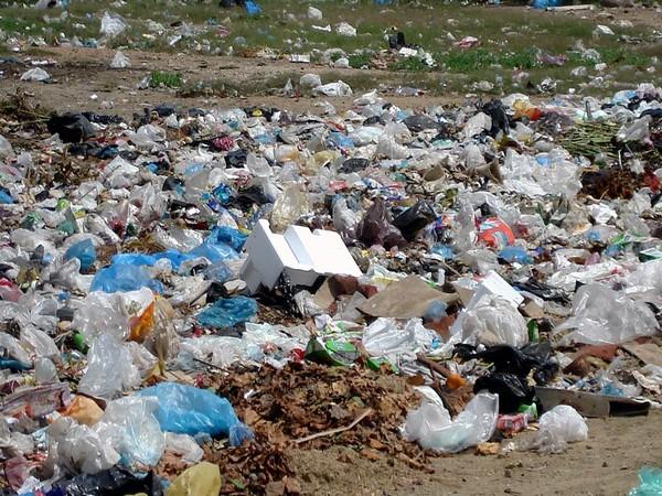 Goa Tourism Development Corporation banned plastic use in Goa on Saturday. Photo/ANI