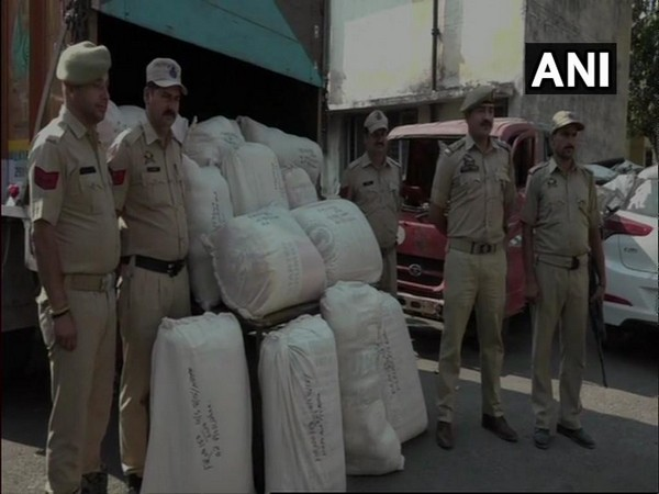 Visual of the seized poppy straw in Kathua, Jammu and Kashmir.