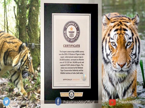 Environment Minister Prakash Javadekar said India fulfilled its resolve to double tiger numbers four years before the target. (Photo: Prakash Javadekar/Twitter)