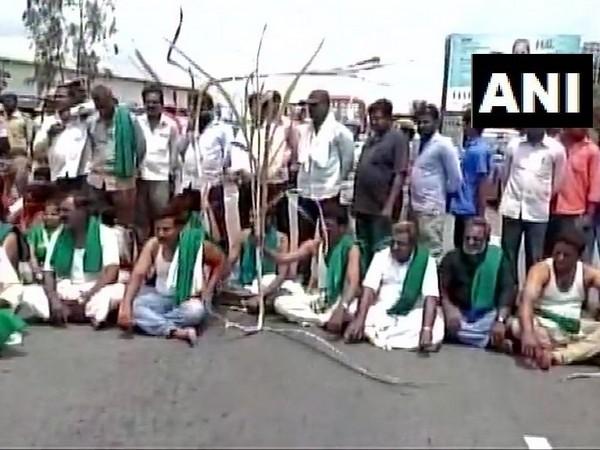 Karnataka farmers blocked Bengaluru-Mysuru highway in Mandya on Wednesday. (Photo: ANI)