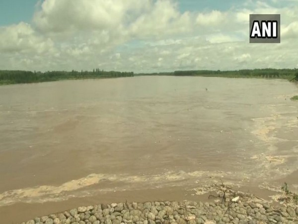 Visuals from the Sutlej river in Ludhiana in Punjab on Sunday. Photo/ANI