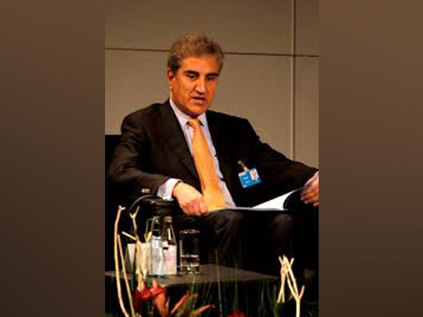 Pakistan Foreign Minister Shah Mahmood Qureshi (File Photo)
